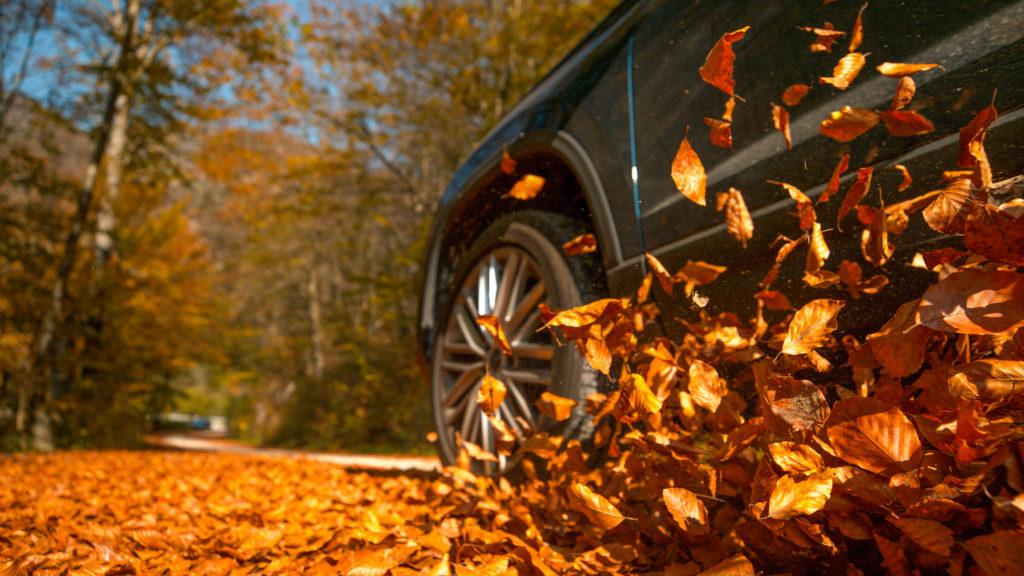 秋、紅葉、Drive。